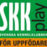 SKK Play